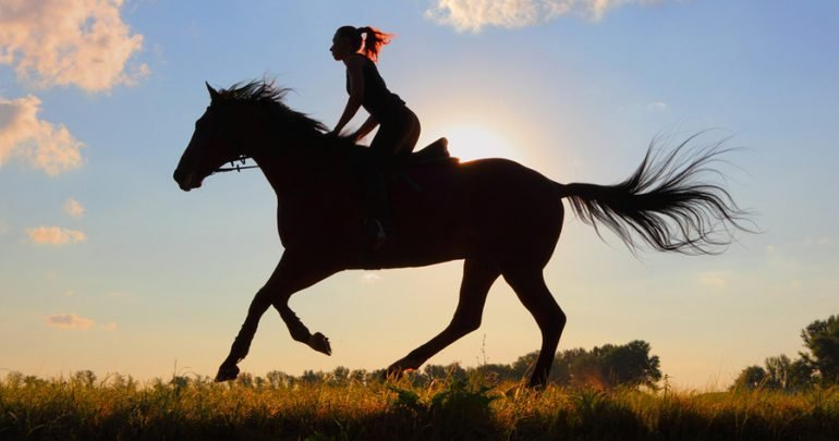 7 Reasons Why Horseback Riding Is the Best Therapy