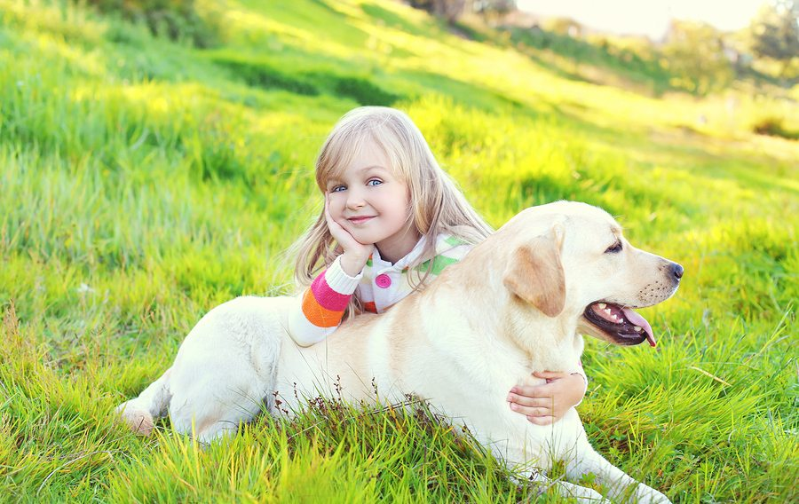 Happy Child And Labrador Retriever Dog Lying On Grass In Summer