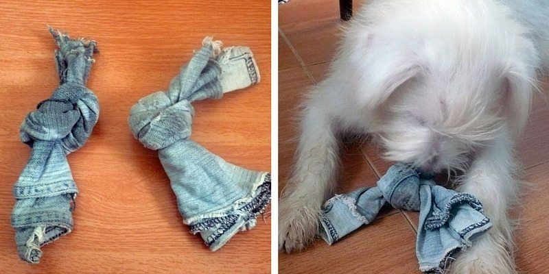 DIY dog toy denim
