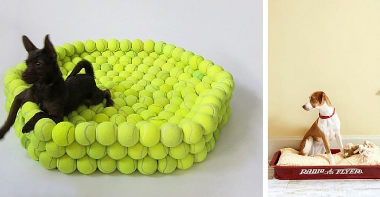 Fashionable Dog Beds