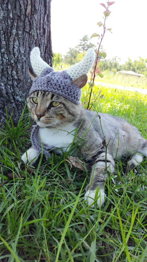 kitty-cat-viking-hat-03