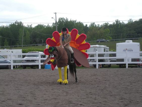 Equinely spooky 25 best horse halloween costumes turkey solutioingenieria Image collections