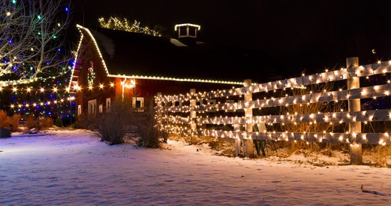 Christmas Lights in barn