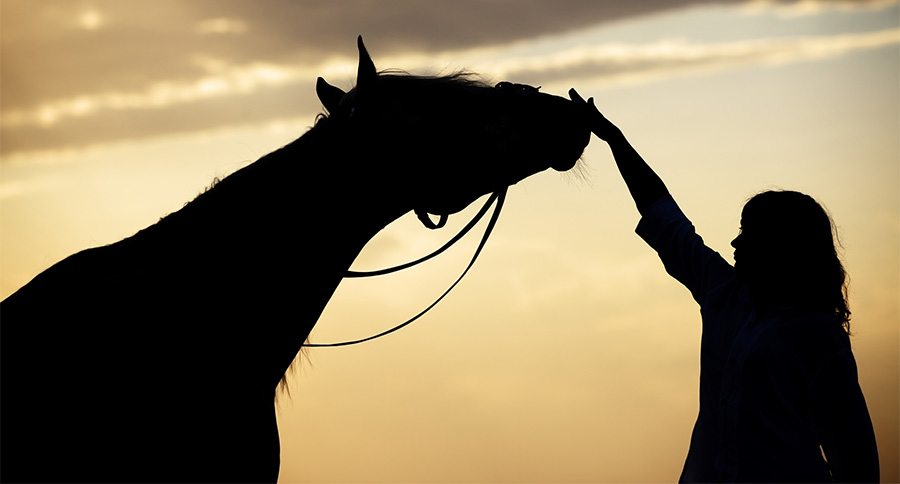 Woman and horse silhouette
