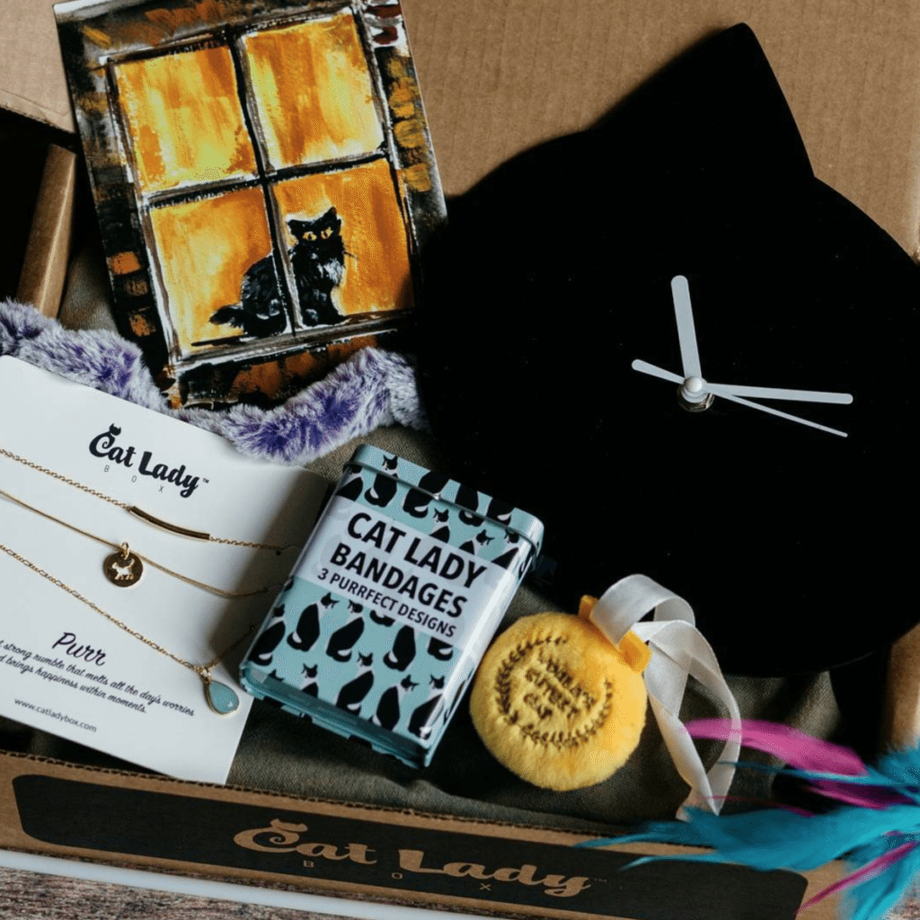 CatLadyBox Cat Subscription Box