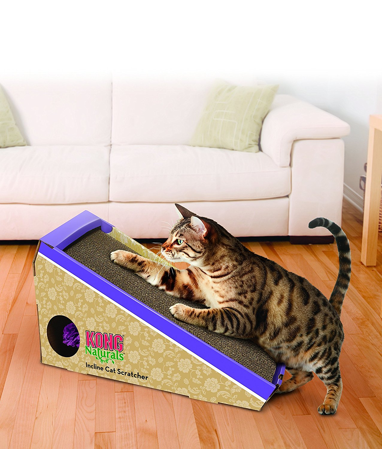 10 Best Cat Toys That Are Guaranteed Keep Your Kitties