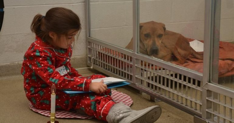 Child reading to adoptable dog