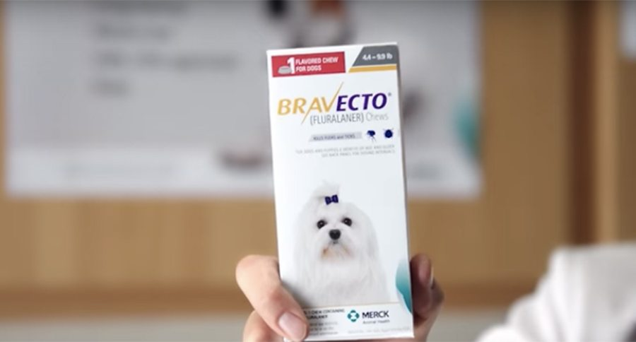 Bravecto Flea Medication Suspected In Numerous Dog Deaths