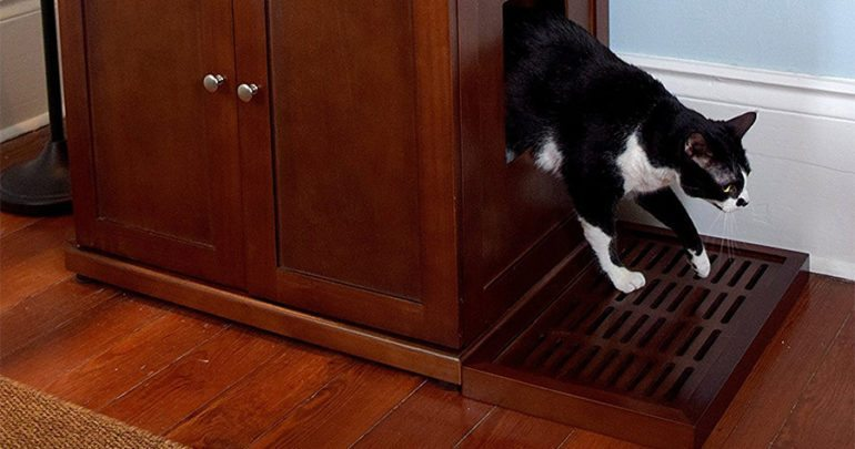 cat coming out of litter box cabinet
