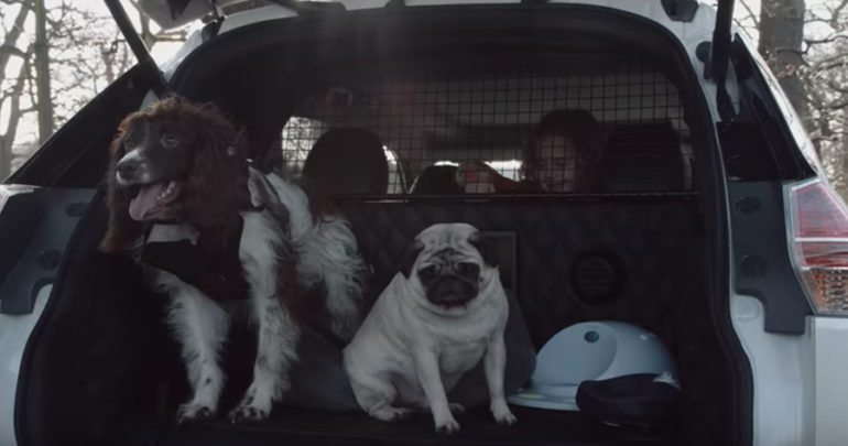 Nissan Has Gone to the Dogs with the X-Trail 4Dogs Car Concept
