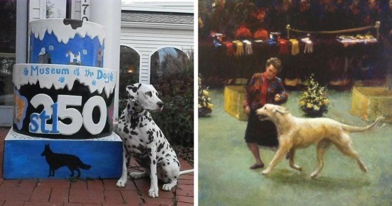 AKC dog museum