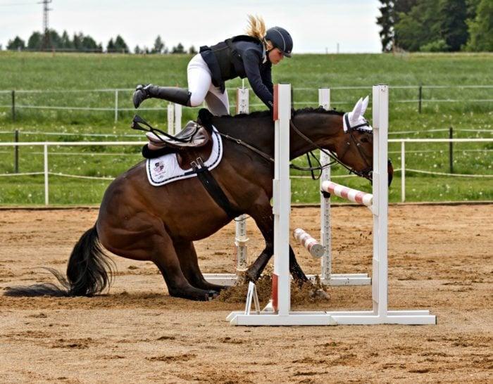 Saddle Fit 101