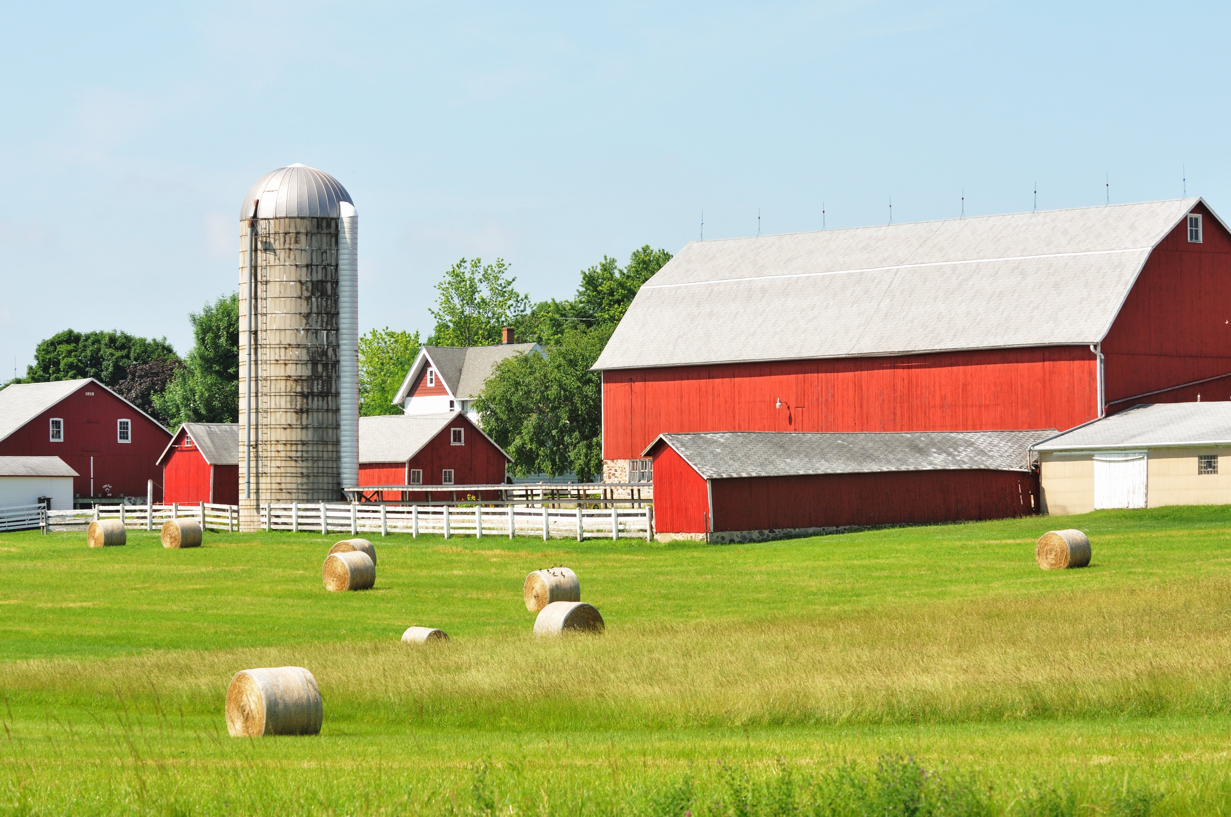 Hayfield and Barns