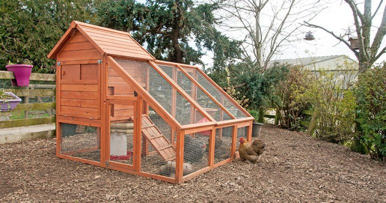 9 diy chicken coop plans for medium to large flocks for Large chicken house