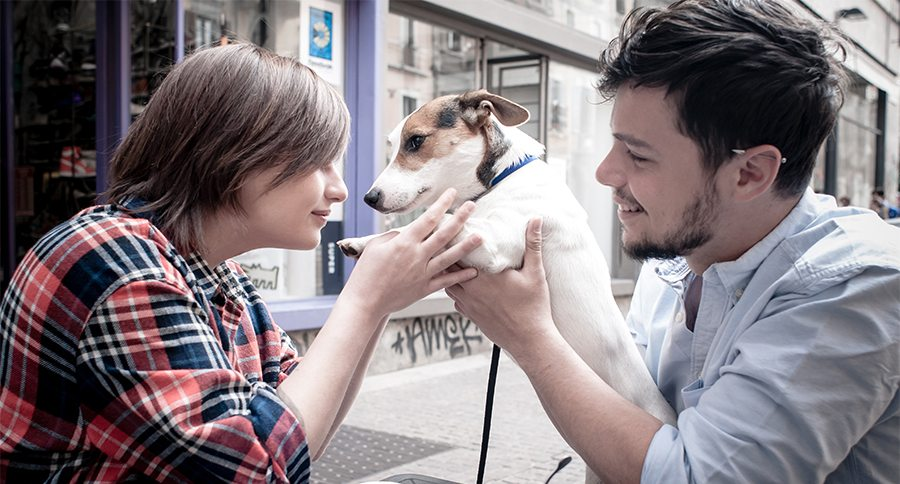 couple at the bar with jack russell in the city