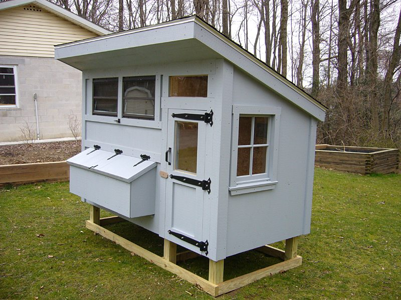 9 diy chicken coop plans for medium to large flocks