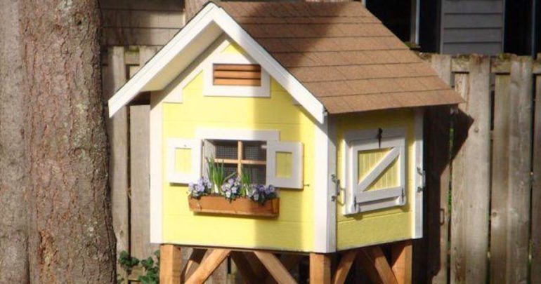 small chicken coop plans - 8 DIY Cute And Functional Small Chicken Coop Plans