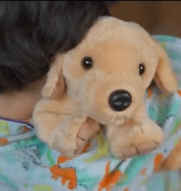 boy hugging stuffed dog