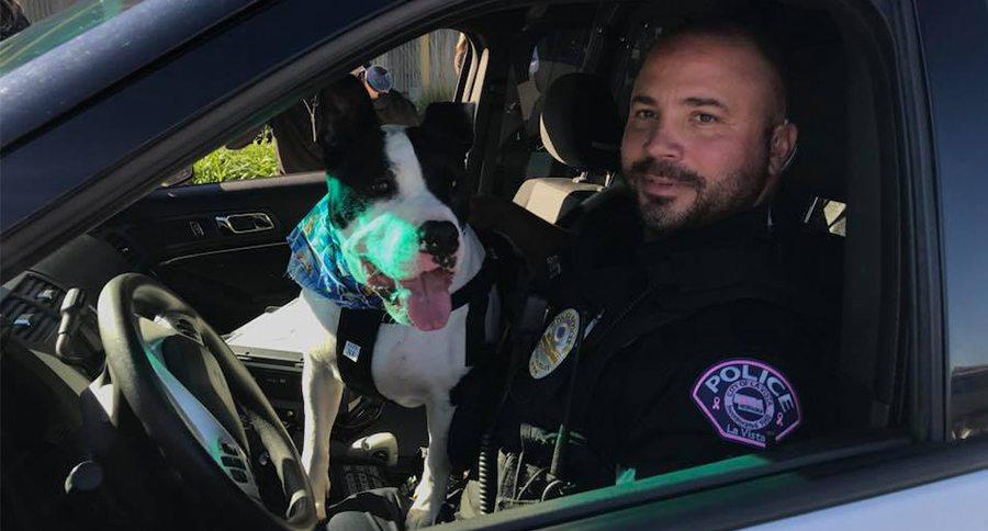 dog and cop