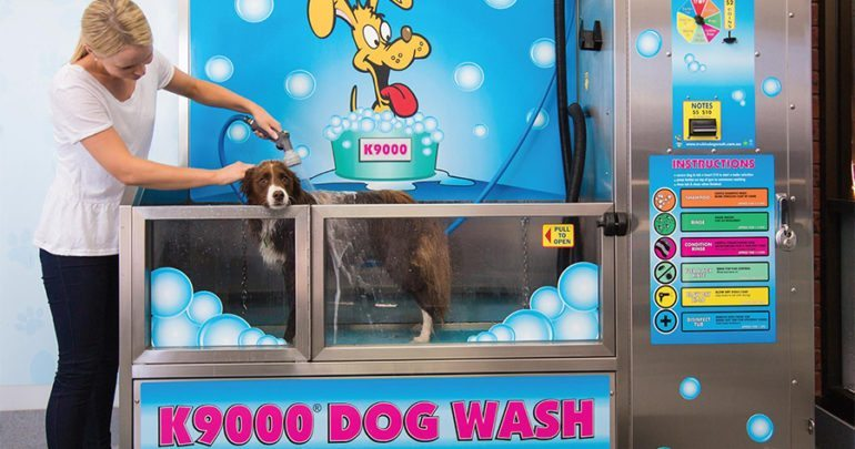 Diy coin operated dog wash stations make their debut in the us dog wash solutioingenieria Choice Image