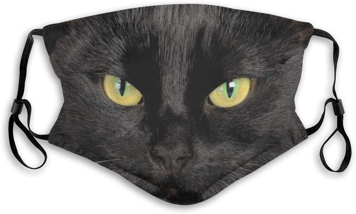 Black Cat Washable Reusable Dust Filter and Reusable Mouth Warm Windproof Cotton Face