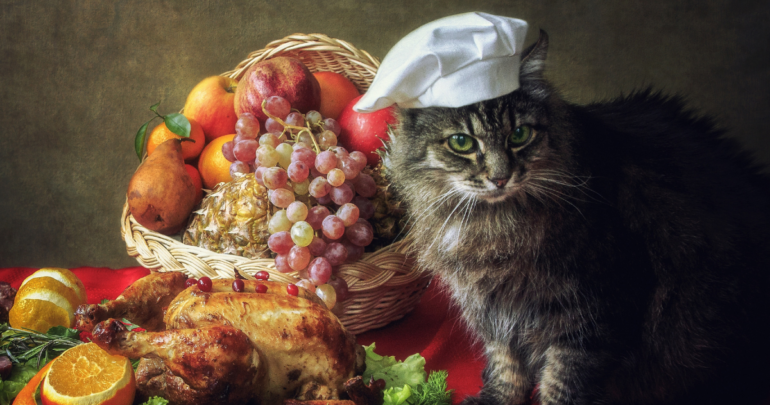 Thanksgiving Food, Cats
