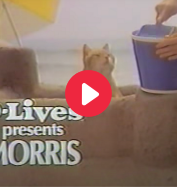 Morris the cat commercial, 1978.